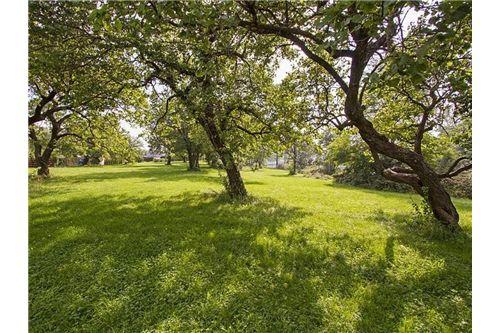04. Obstgarten