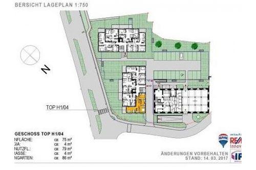 Lageplan_EG_Top_H1_04