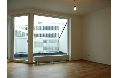 03 Terrasse vom Wohnzimmer begehbar