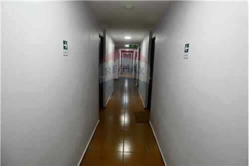 Departamento - Arriendo - La Serena, Elqui, Coquimbo - 52 - 1028087004-11
