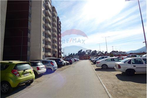 Departamento - Arriendo - La Serena, Elqui, Coquimbo - 33 - 1028087004-11