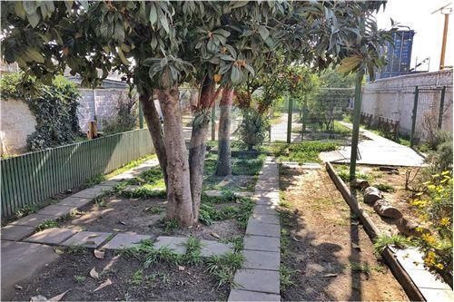 Comercial/Negocio - Venta - Puente Alto, Santiago, Metropolitana De Santiago - Cuarto de Jardinería - 1028076024-25