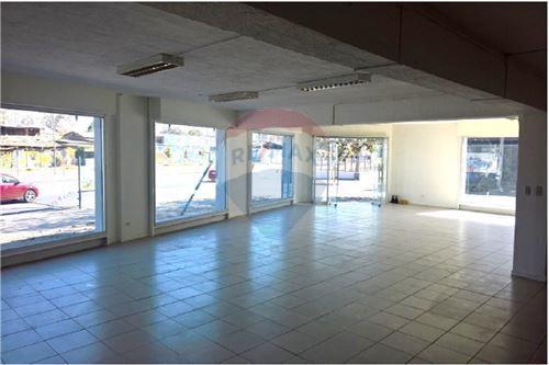 Comercial/Negocio - Arriendo - Quinta Normal, Santiago, Metropolitana De Santiago - 1 - 1028076012-15