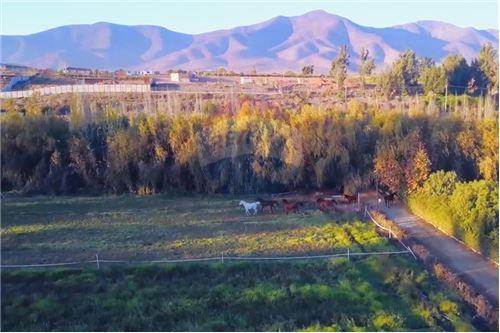 Terreno para construcción - Venta - La Serena, Elqui, Coquimbo - 48 - 1028068001-213