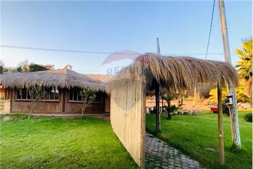 Terreno para construcción - Venta - La Serena, Elqui, Coquimbo - Cuarto de Jardinería - 1028068001-213