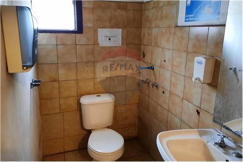 Comercial/Negocio - Arriendo - La Cisterna, Santiago, Metropolitana De Santiago - Baño - 1028056017-19
