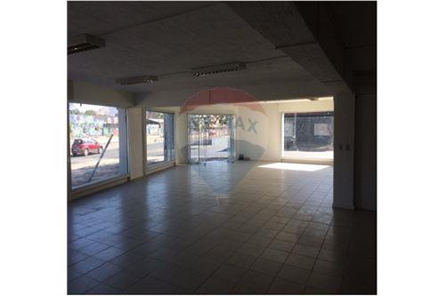 Comercial/Negocio - Arriendo - Quinta Normal, Santiago, Metropolitana De Santiago - 3 - 1028076012-15