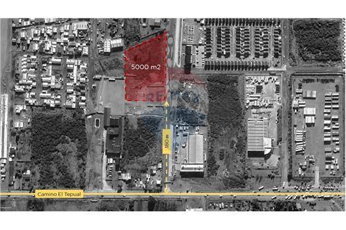 Terreno Industrial - Arriendo - Puerto Montt, Llanquihue, Los Lagos - 2 - 1028046095-11