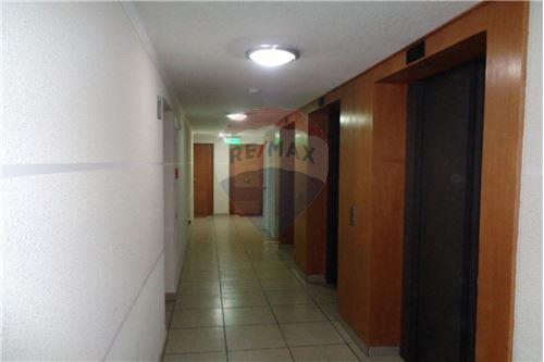 Departamento - Arriendo - La Florida, Santiago, Metropolitana De Santiago - 13 - 1028079006-105