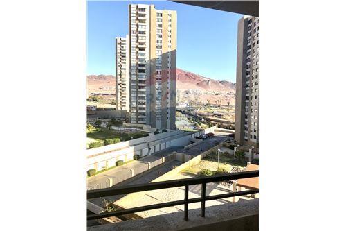 Departamento - Venta - Antofagasta, Antofagasta, Antofagasta - 14 - 1028004001-509
