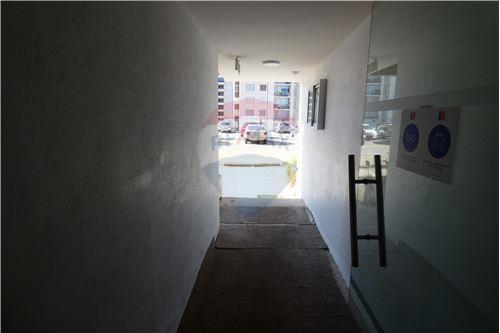 Departamento - Arriendo - La Serena, Elqui, Coquimbo - 37 - 1028087004-11
