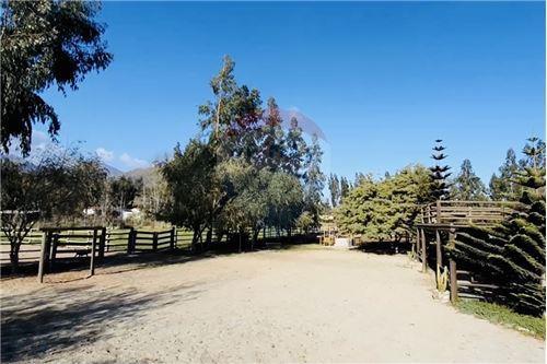 Terreno para construcción - Venta - La Serena, Elqui, Coquimbo - 44 - 1028068001-213