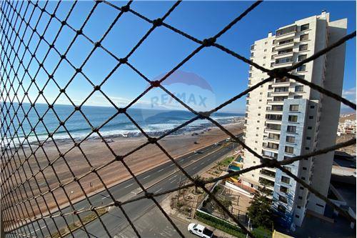 Departamento - Venta - Antofagasta, Antofagasta, Antofagasta - 39 - 1028004018-244