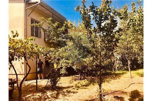 Real estate properties for sale or rent in Mtskheta