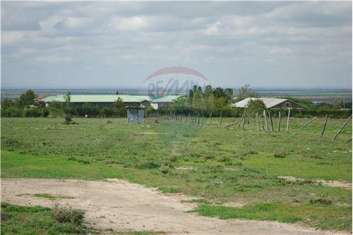 Land - For Sale - Kyumbi - 12 - 106003014-141