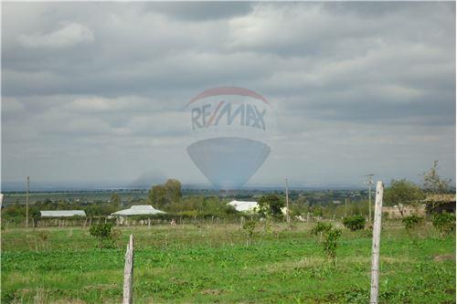 Land - For Sale - Kyumbi - 14 - 106003014-141