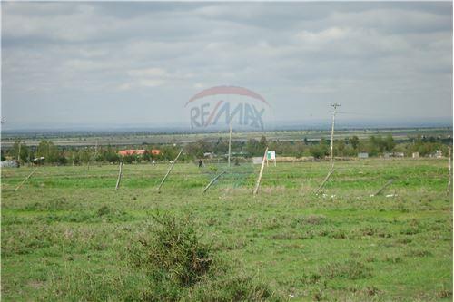 Land - For Sale - Kyumbi - 15 - 106003014-141
