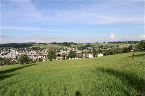 Einfamilienhaus - Kauf - Burg AG, Aargau - Burg - 119761007-51