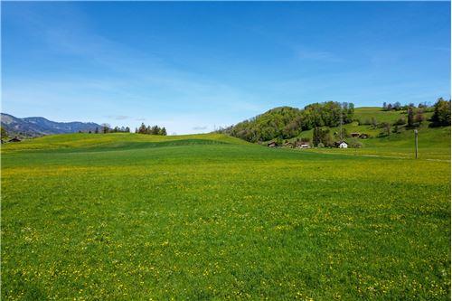 Einfamilienhaus - Kauf - Niederstocken, Bern - 48 - 119121019-293
