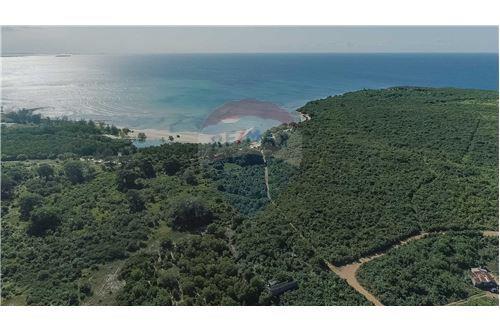 Land - For Sale - Dar es Salaam - 5 - 115015007-11