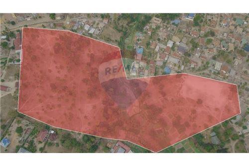 Land - For Sale - Dar es Salaam - 2 - 115015007-12