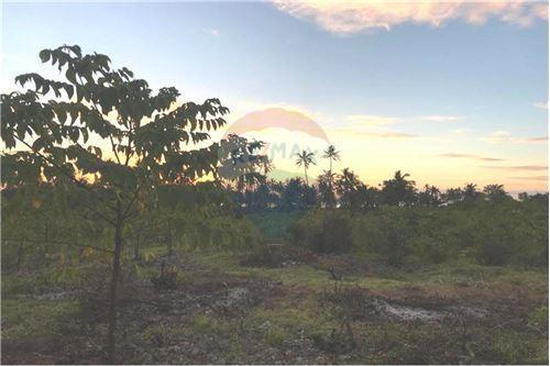 Land - For Sale - Zanzibar - 14 - 115006033-13