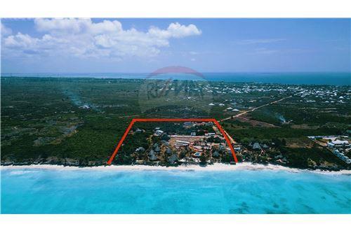 Land - For Sale - Zanzibar - 25 - 115006002-99