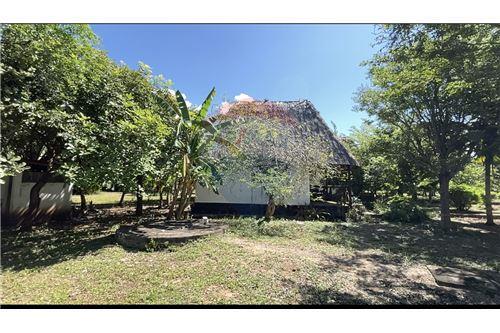 Land - For Sale - Dar es Salaam - Garden - 115015007-9