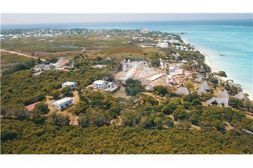Land - For Sale - Zanzibar - 43 - 115006002-99