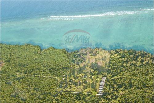 Land - For Sale - Zanzibar - 21 - 115006024-2