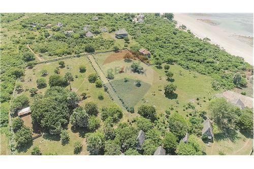 Land - For Sale - Dar es Salaam - 13 - 115015007-9