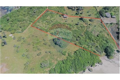 Land - For Sale - Dar es Salaam - 24 - 115015007-10