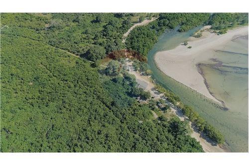 Land - For Sale - Dar es Salaam - 17 - 115015007-11