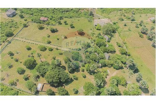 Land - For Sale - Dar es Salaam - 22 - 115015007-9