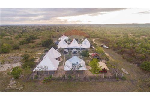 Lodge - For Sale - Coast - 2 - 115015006-8