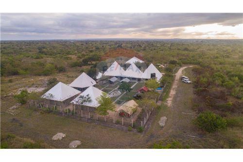 Lodge - For Sale - Coast - 3 - 115015006-8