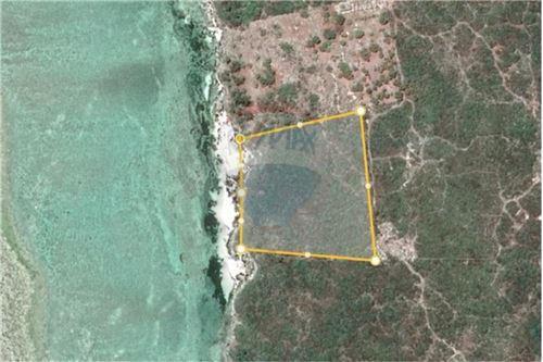 Land - For Sale - Zanzibar - 14 - 115006024-2