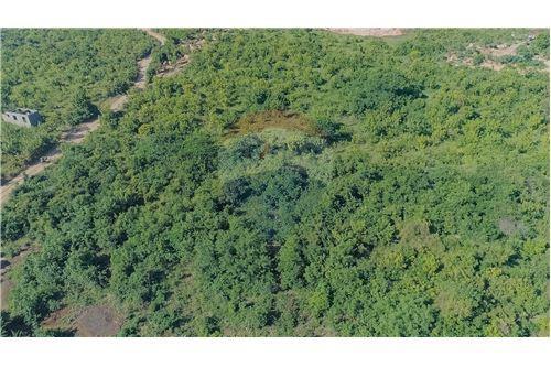 Land - For Sale - Dar es Salaam - 14 - 115015007-11