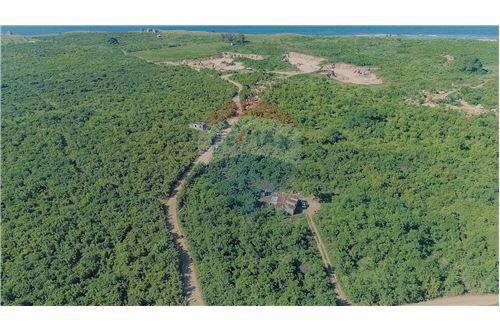 Land - For Sale - Dar es Salaam - 19 - 115015007-11