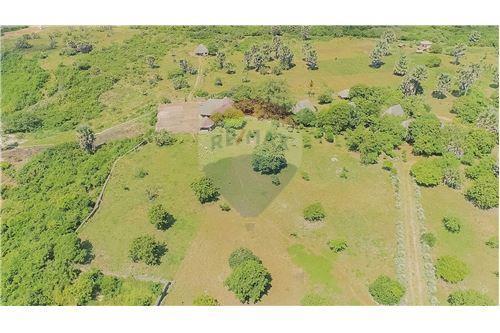 Land - For Sale - Dar es Salaam - 18 - 115015007-9
