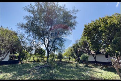 Land - For Sale - Dar es Salaam - 6 - 115015007-9
