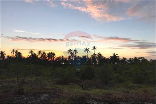 Land - For Sale - Zanzibar - 15 - 115006033-13