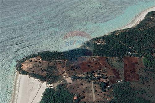 Land - For Sale - Dar es Salaam - 25 - 115015007-9