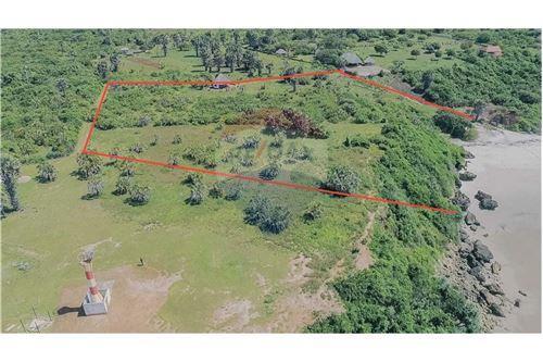 Land - For Sale - Dar es Salaam - 25 - 115015007-10
