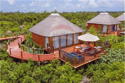 Hotel - For Sale - Zanzibar - 1 - 115006002-212