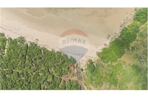 Land - For Sale - Dar es Salaam - 14 - 115015007-9
