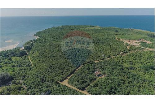 Land - For Sale - Dar es Salaam - 8 - 115015007-11