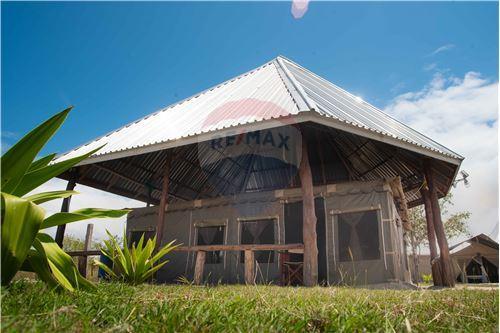 Lodge - For Sale - Coast - 7 - 115015006-8