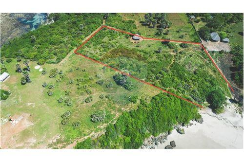Land - For Sale - Dar es Salaam - 29 - 115015007-10