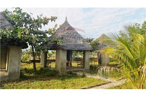 Hotel - For Rent/Lease - Zanzibar - 25 - 115006024-34